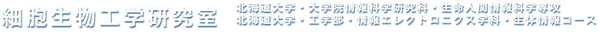 細胞生物工学研究室 Laboratory of Cellular and Tissue Engineering / 北海道大学・大学院惁E��科学研究科�E生命人間情報科学専攻 北海道大学・工学部・惁E��エレクトロニクス学科�E生体情報コース Division of Bioengineering and Bioinformatics, Graduate School of Information Science and Technology, Hokkaido University
